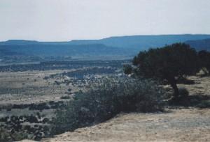 The desert near ABQ