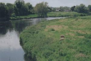 The Boyne River near Dublin